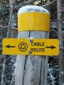 The Cable Trail